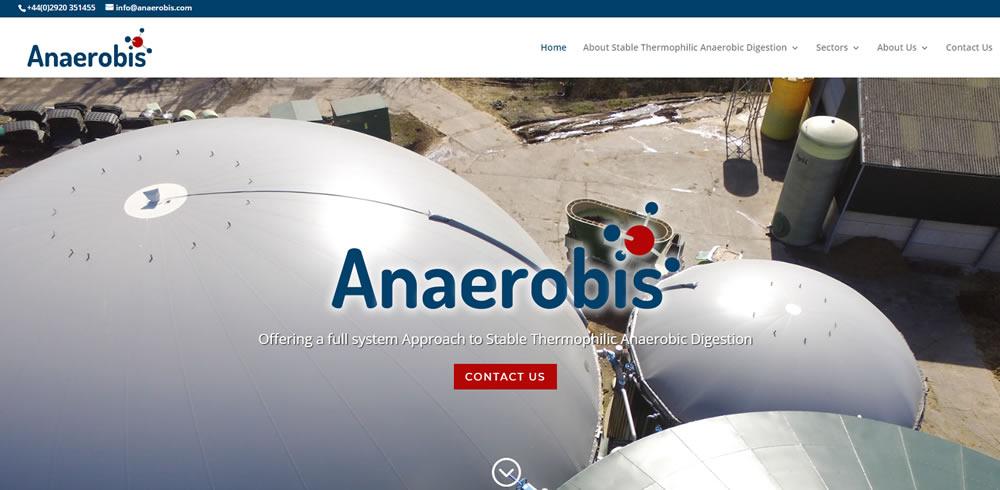 anaerobis